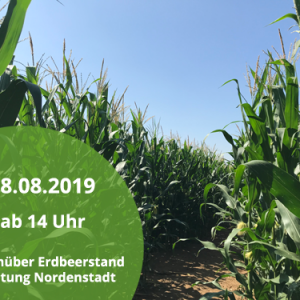 Maislabyrinth am 28.08.19